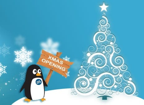 Business IT Support- Christmas Opening