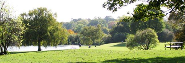 Business IT support - St Albans park